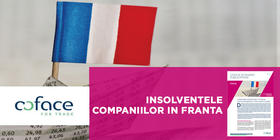 Corporate insolvencies in France: microenterprises in the trough of the wave