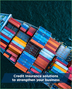 Credit Insurance solutions to strengthen your business